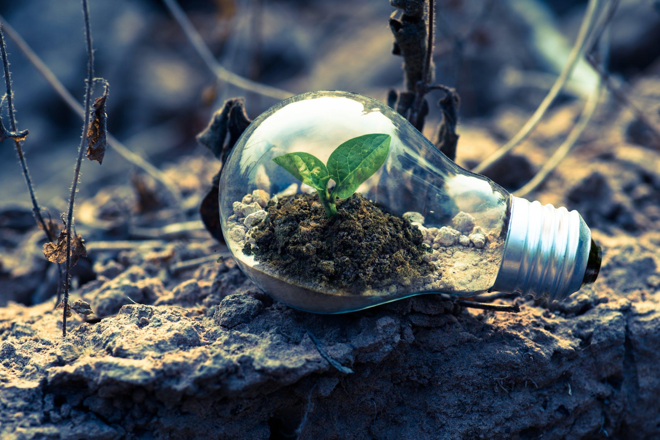 Aj z malej myšlienky vie vyrásť veľký čin.